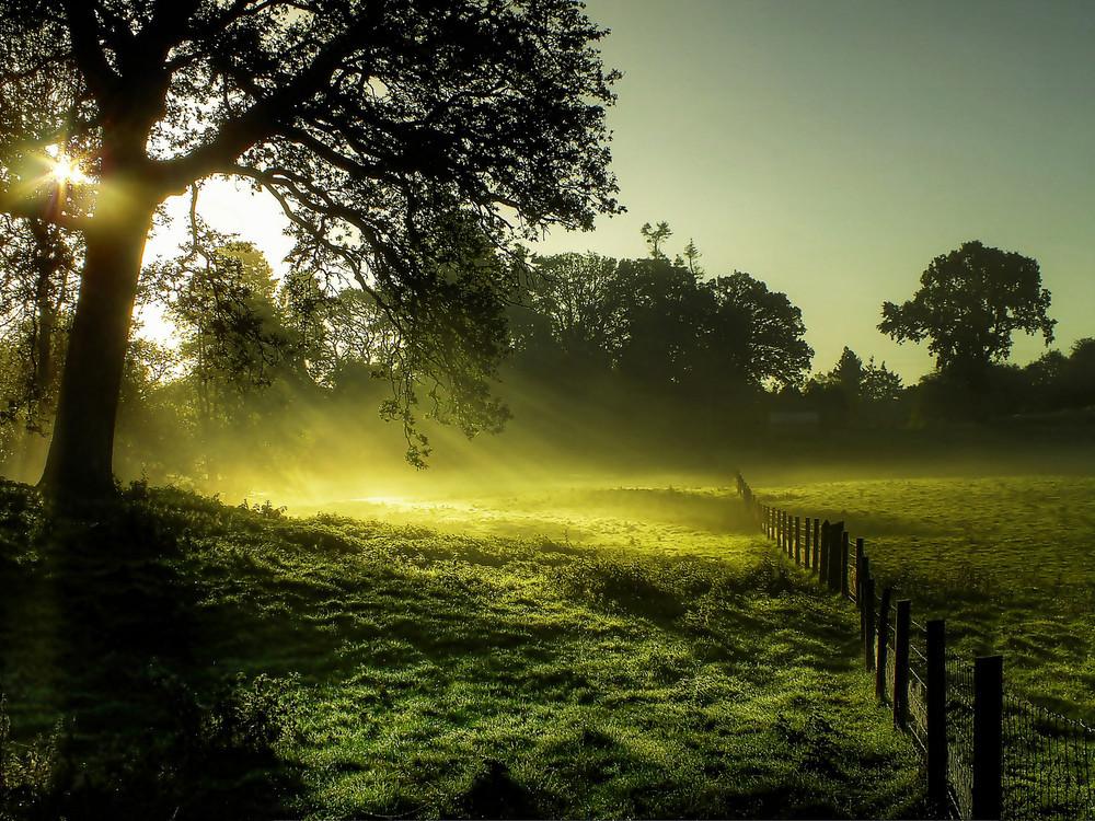 تصاویر دیدنی زیبا از طبیعت که شما را خیره میکند!