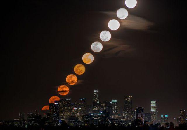 پر بیننده ترین عکس های سال 2013 به روایت گوگل !