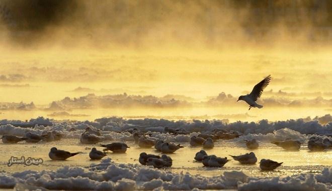 تصاویر دیدنی از دیدنی های جهان طبیعت