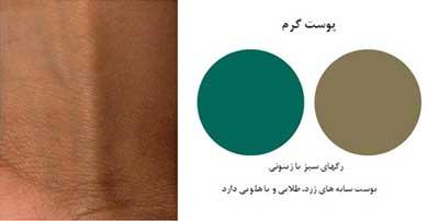 تشخیص رنگ پوست برای یک آرایش زیبا