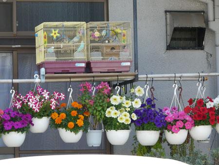 آموزش تزیین گلدان,ایده های خلاقانه تزیین گلدان سفالی,تزیین گلدان منزل