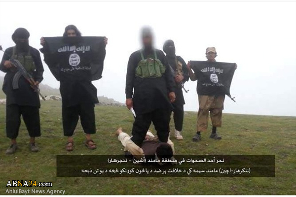 اعدام فجیع مرد افغانی به دست داعش /تصاویر