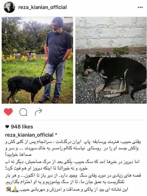 اولین پست رضا کیانیان درباره مرگ سگ حبیب