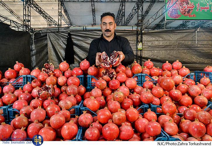 برگزاری جشنواره انار، میوه قرآنی از اول آبان ماه در مصلی تهران