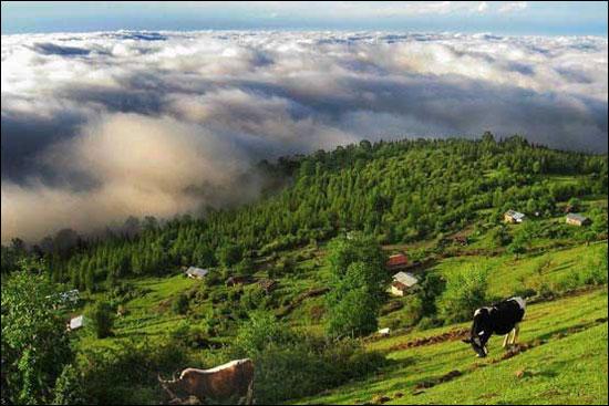 مناظری از شمال ایران + عکس