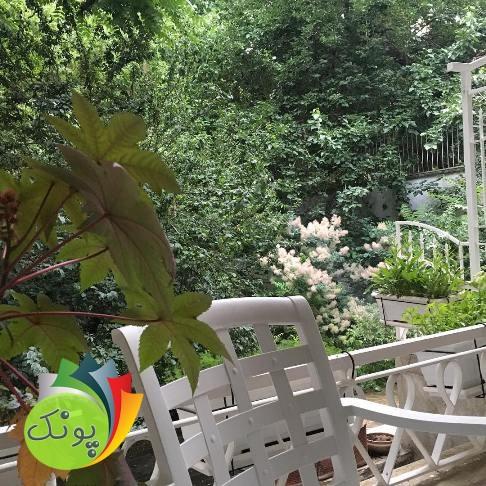 نیکی کریمی و خانه زیبای او در زعفرانیه + عکس
