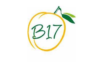 دانه هایی که سرطان شفا می دهند/ ویتامین B17