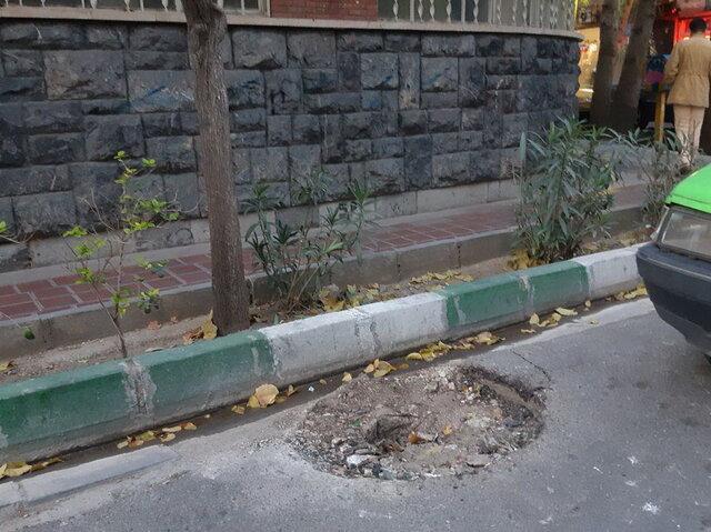حذف تیربرقهای با نشان «شیر و خورشید» در تهران