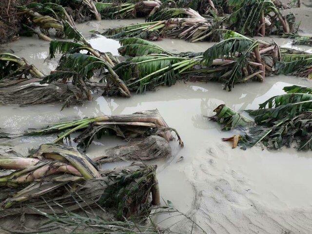 سیل زدگان سیستان و بلوچستان بی خانمان شدهاند/ نیاز شدید به کمکهای امدادی از سراسر کشور + فیلم