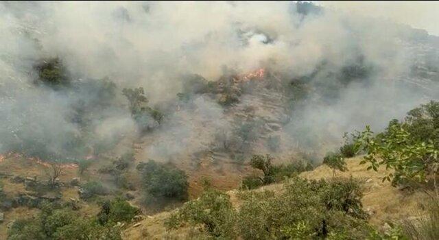 شعلهور شدن مجدد آتش در منطقه حفاظت شده خائیز/ تقاضای کمک از مردم داریم