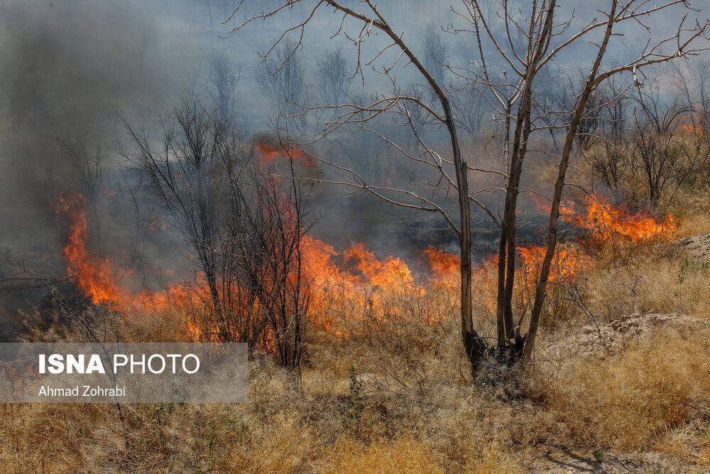 سفیدکوه خرمآباد دوباره در آتش سوخت