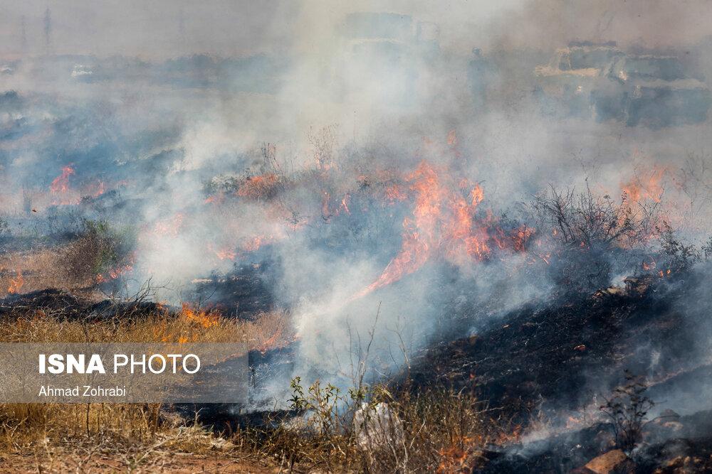 آتشسوزی سفیدکوه در حال اطفاء است/ میزان خسارت مشخص نیست