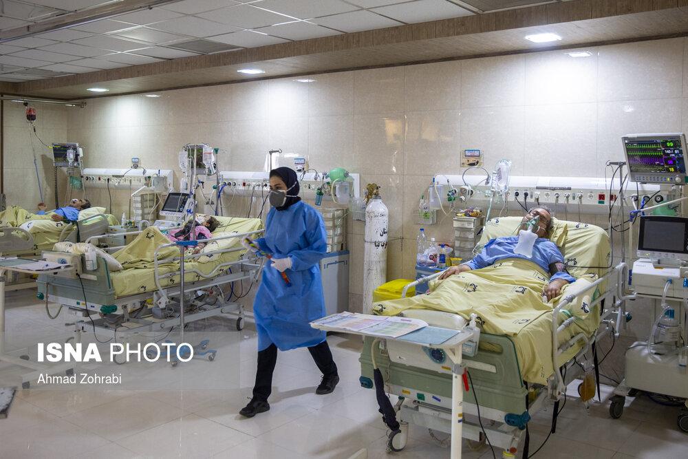 کاهش قدرت کرونا در بوشهر /فوتیهای کرونایی به ۳۱۸ نفر رسید
