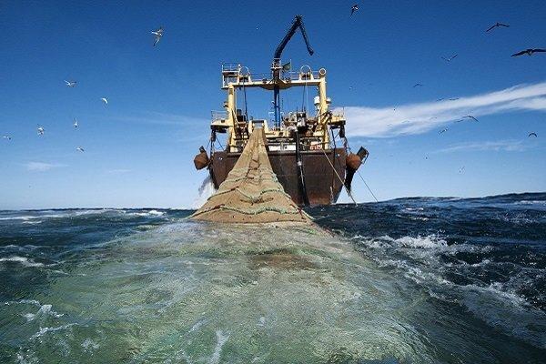 جزئیات ممنوعیت صید ترال فانوس ماهیان