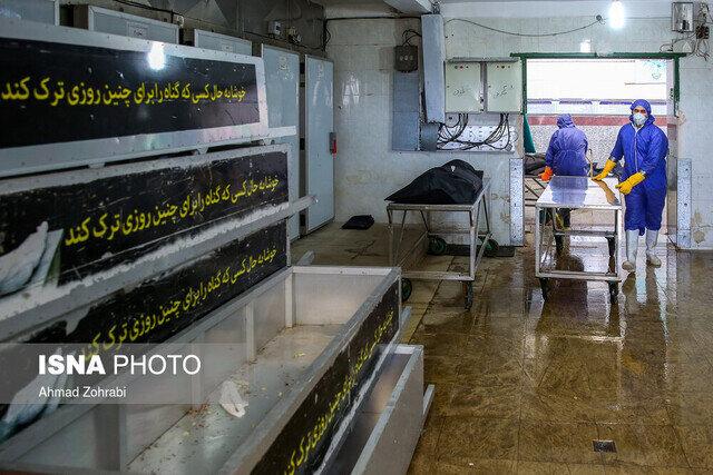 سایه سنگین کرونا بر فارس/ مرگ ۴۲ نفر در ۲۴ ساعت