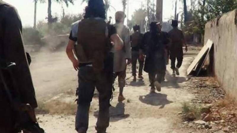 المیادین: آمریکا زندانیهای داعشی را برای حملات در سوریه و عراق آزاد میکند