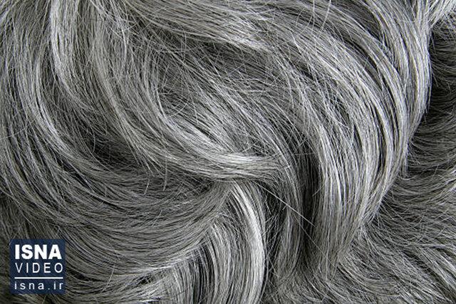 ویدئو / از کشف یک ابر گازی عظیم تا بازگشت رنگ طبیعی موهای خاکستری