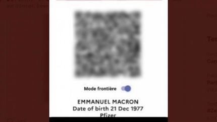 لو رفتن رمز گذرنامه سلامت رئیس جمهور فرانسه در اینترنت