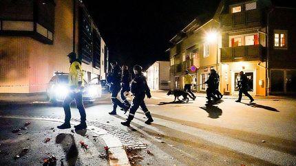 حمله یک مرد با تیروکمان در نروژ / چند نفر کشته و زخمی شدند