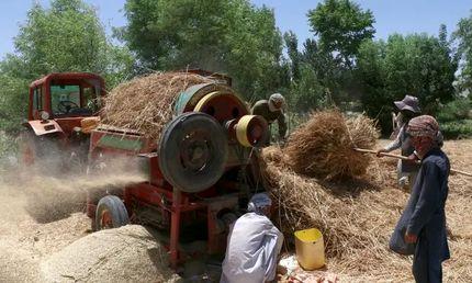 دیدهبان حقوق بشر: طالبان هزاران شیعه هزاره را از خانههایشان بیرون کرده است